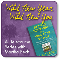 Wild New Year Wild New You Telecourse Conference through Martha Beck